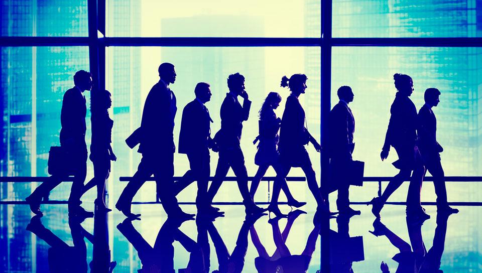 FutureSolve HR Business-Executives